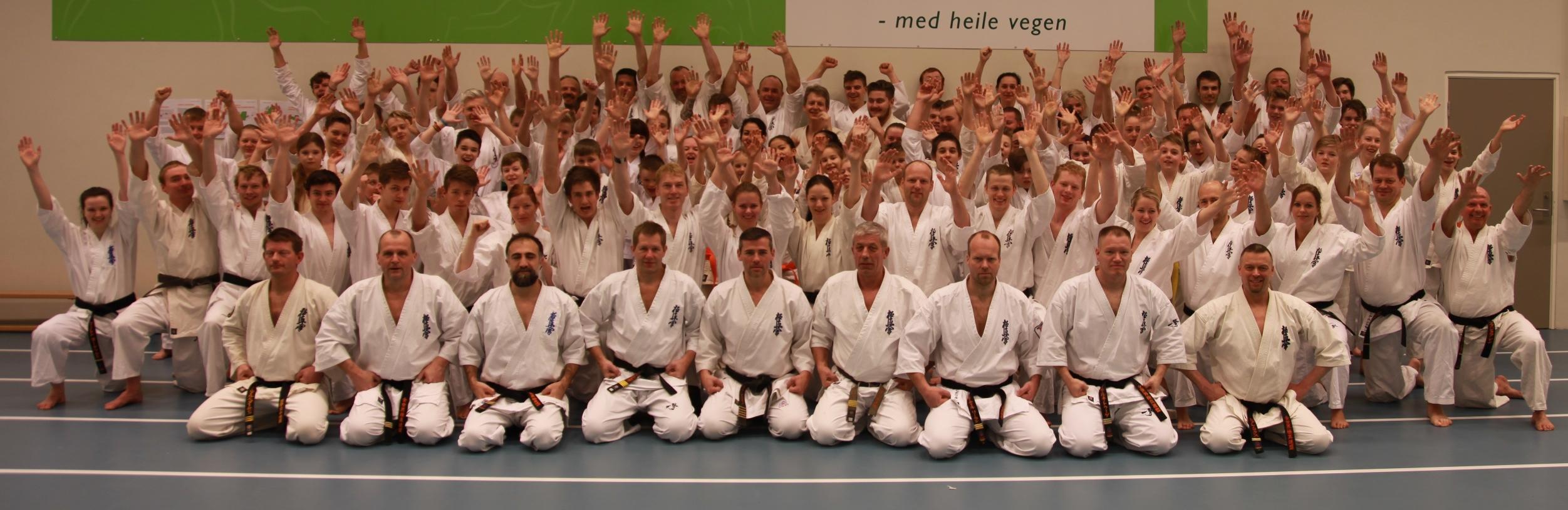 Seminario karate kyokushin noruega 2016 gimnasio yin yang for Gimnasio yin yang